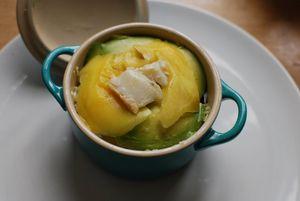 Cocotte mangue